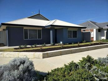View profile: Size and Style in Golden Bay