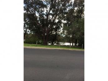ACROSS THE ROAD FROM THE COLLIE RIVER